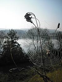 2008-09-20_1.jpg