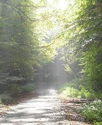 2008-10-12.jpg